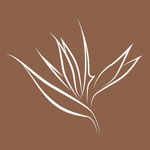 Hawaii Development Group